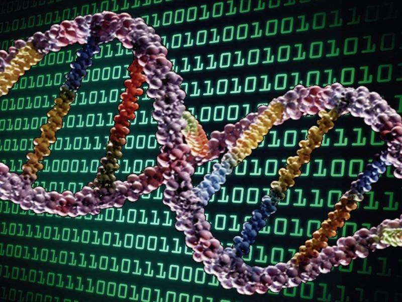 BinaryDNA